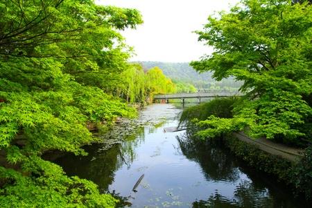 West Lake Park, Hangzhou China photo