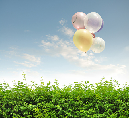 vintage colorful balloon with blue sky and green wall.