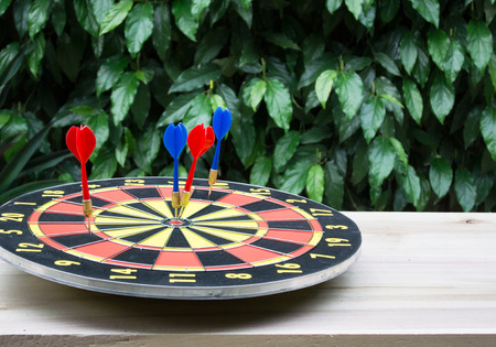 success risk: Dart is a competition and opportunity. Dartboard is be like as the target center and goal of business. therefor Bulls eyes of Dart board is both challenge,success,risk management,goal,opportunity.