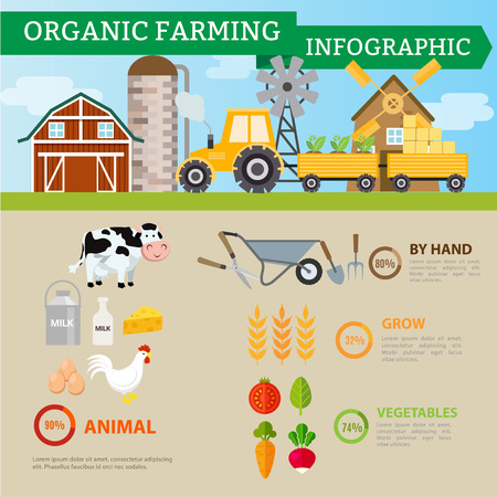 organic farming: Organic farming and industrial food,Vegetables,fruits,mik,egg and rice product infographic. Illustration
