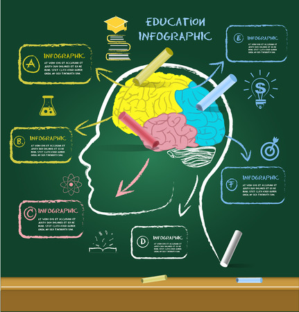 brain illustration: Brain drawing for education with chalk on chalkboard.can used for banner,infographic,data,presentation business,chart,sign,brochure,leaflet ,web and instruction media.Vector illustration.