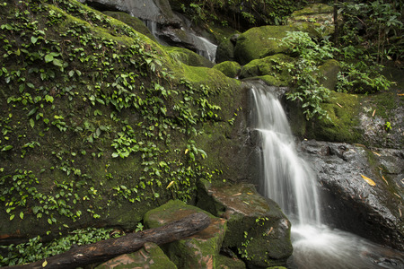 Waterfall with green moss in rain forest at Phu Soi Dao National Park in Uttaradit, Thailand.