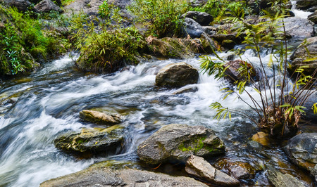 tunable: Streams flowing down from the waterfall.