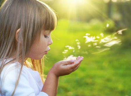 blowing dandelion: Gioia di estate
