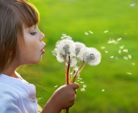 freedom leisure activity: Fun with dandelions