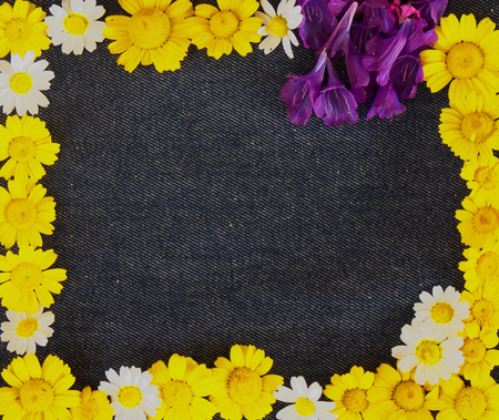 Frame of yellow daisies and flowers on a blue jeans background