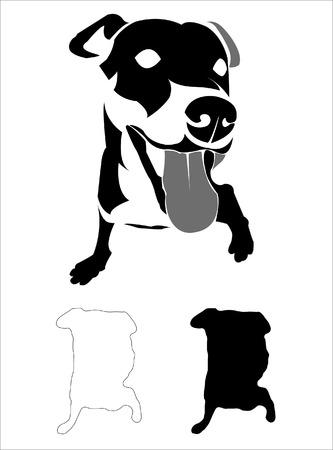 Vector dog white background Vector