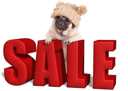 Schattige pug puppy hondje opknoping met poten op grote rode verkoop teken, geïsoleerd op een witte achtergrond Stockfoto - 69586877