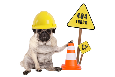 pug dog with yellow constructor safety helmet and cone and 404 error and dead end sign on wooden pole, isolated on white background Stockfoto