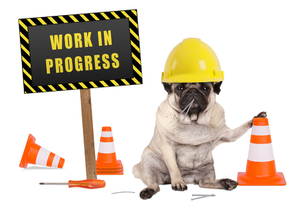 pug dog with constructor safety helmet and yellow and black work in progress sign on wooden pole, isolated on white background