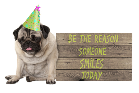 bad tempered pug puppy dog with wooden sign with text be the reason someone smiles today, isolated on white background Stockfoto