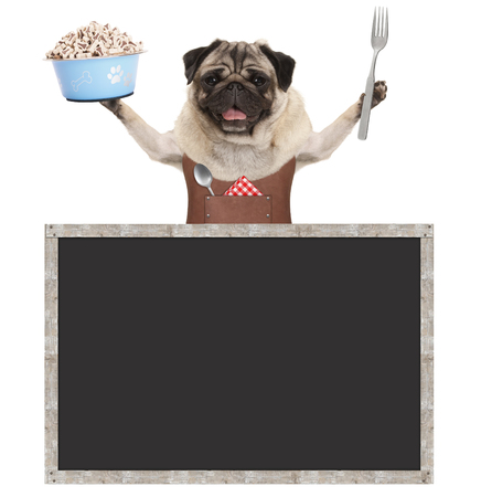 sweet smiling pug puppy dog holding food bowl with treats and wearing leather apron, with blank blackboard sign, isolated on white background