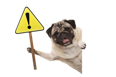 sonriente cachorro de perro cachorro sosteniendo alerta amarilla, signo de atención con signo de exclamación, aislado sobre fondo blanco