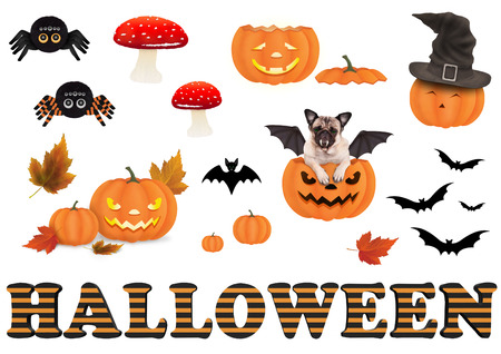 cute funny halloween decoration elements, isolated on white background