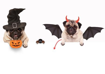 Nett Halloween Ausgeschnittene Vorlagen Ideen - Ideen färben ...