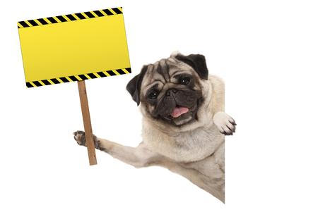 perro de perrito del barro amasado sonriente que lleva a cabo la señal de peligro amarilla rectangular en blanco, aislada en el fondo blanco