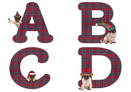 schattige kerst pug puppy hond alfabet letters ABCD, geïsoleerd op een witte achtergrond