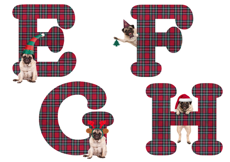 cute Christmas pug puppy dog alphabet letters E F G H, isolated on white background