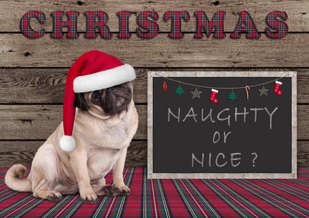 leuke Kerstmis pug puppyhond met santahoed en bord met ondeugende of aardige tekst, op houten achtergrond