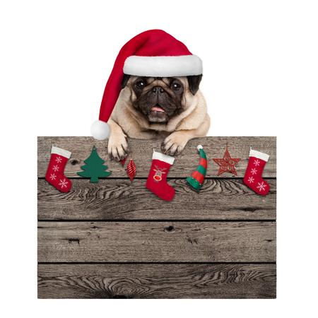 schattige pug puppy hondje dragen KERSTMUTS opknoping met poten oude houten bord met Kerstdecoratie, geïsoleerd op een witte achtergrond Stockfoto