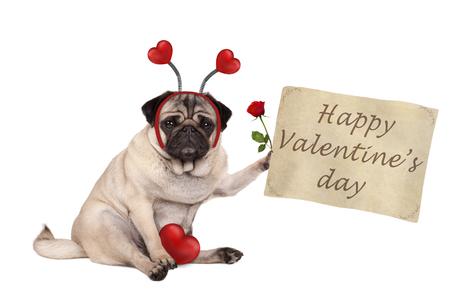 Valentijnsdag pug hond zitten, papieren rol omhoog te houden, het dragen van diadeem met harten, geïsoleerd op een witte achtergrond te houden