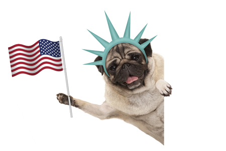 smiling pug puppy dog holding up American flag, sideways from white banner, wearing lady Liberty crown, isolated