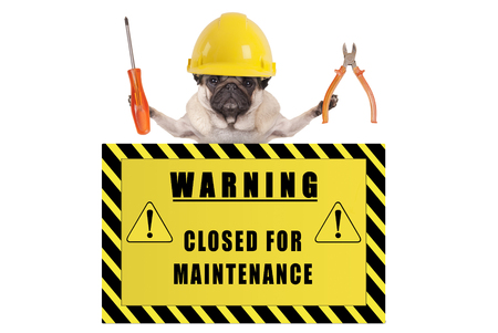 pug dog with constructor safety helmet holding pliers and screwdriver with yellow warning sign saying closed for maintenance, isolated on white background