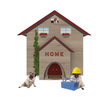 cute average working class pug dog familiy, sitting down in front of their renovated home, isolated on white background Archivio Fotografico