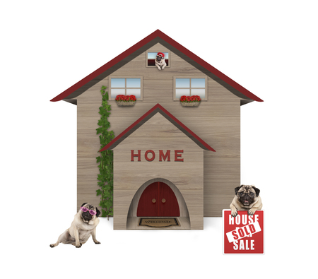 average middle class pug dog familiy, sitting down in garden with house sold sign at new home, isolated on white background Archivio Fotografico