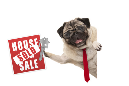 smiling business pug dog with glasses and tie, holding up red house sold sign and key, isolated on white background