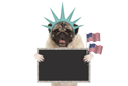 smiling pug puppy dog holding up American flag and blank blackboard sign, wearing lady Liberty crown, isolated on white Stockfoto