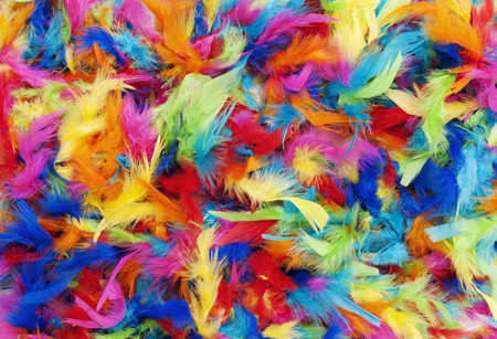 background texture of bright colorful feathers in rainbow colors Stockfoto - 108295772