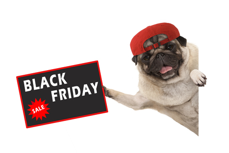 frolic pug puppy dog with red cap, holding up sale sign with text Black Friday, hanging sideways from white banner, isolated Imagens - 116082216
