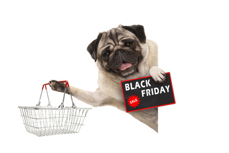 happy smiling pug puppy dog, with wire metal shopping basket and Black Friday Sale sign, behind white banner, isolated Stockfoto - 116082217