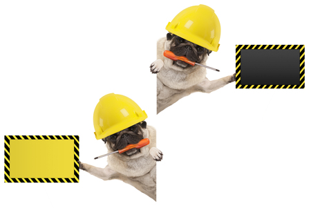 frolic mechanic construction worker pug dog with constructor helmet, holding orange screwdriver and blank yellow and black sign board, isolated on white background Archivio Fotografico