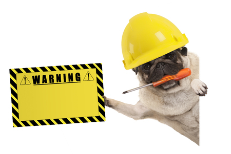 frolic construction worker pug dog with constructor helmet, holding orange screwdriver and yellow warning sign board, isolated on white background Archivio Fotografico