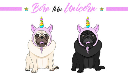 cute vector black and fawn pug puppy dogs sitting down, wearing pink bonnet with unicorn horn with rainbow colors Stockfoto - 124065619