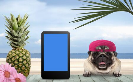 smiling tropical summer pug dog with cap and tablet, with paws on vintage green wooden table and sea and beach on background Archivio Fotografico