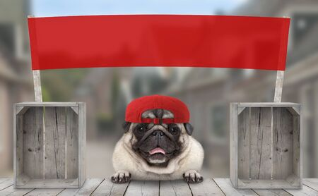 frolic smiling merchant pug puppy dog with hat and blank red promotional  banner sign, selling at street market