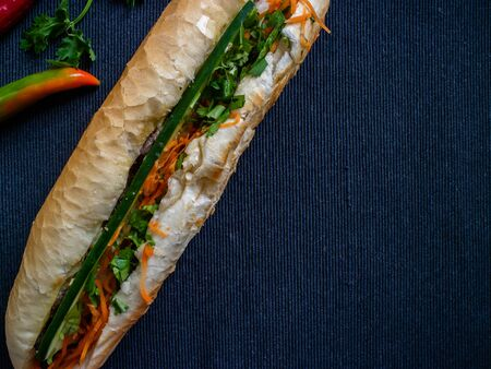 Vietnamese sandwich banh mi neo huong filled with pork with a gray background