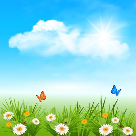 春の背景にデイジー、蝶、青い空に雲で草太陽の下でてんとう虫