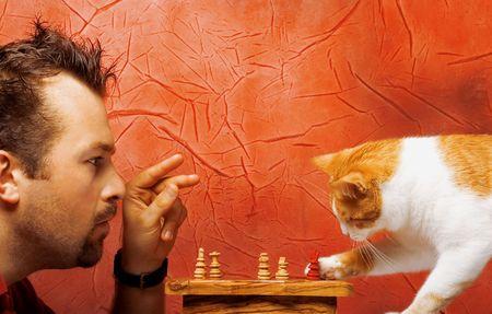 gamesmanship: Dos jugadores de ajedrez: el hombre y el gato