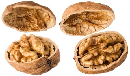 opened walnuts