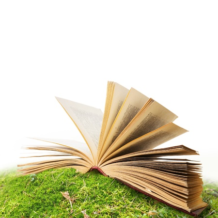 open book in moss