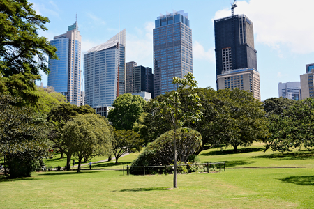 Australia; Sydney October 25th 2018 -View on business centre with skyscrappers. City park in Sydney Standard-Bild - 123681368
