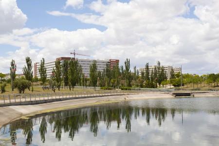 urbanization: black poplars over a lake and an urbanization in Zaragoza