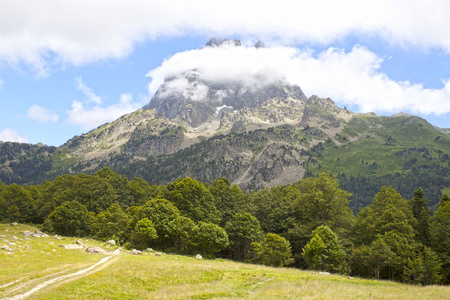 Midi dOssau peak between trees in a summer day, Pyrenees, France Stock Photo