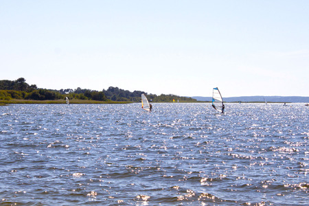 windsurfers: windsurfers in the middle of a lake in a sunny day