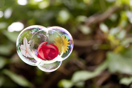 three flowers flying in a three bubble together like sisters