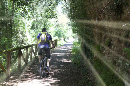 cyclist near a wooden fence in the bear path in Asturias, Spain